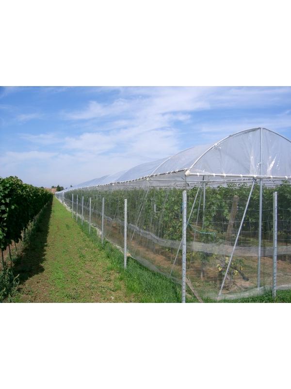 Insektenschutznetz insektenschutznetze bb shop for Insektenschutznetz garten