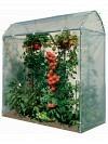 BB Tomatenhaus aus Stahl, direkt vom Hersteller Tomatenhaus TH100-175, komplett inklusive Folie und Clips Tiefe: 100cm, Länge: 175cm, Höhe 210cm
